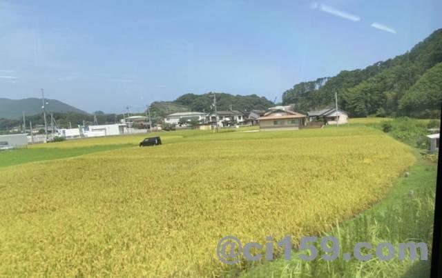 紀勢本線キハ25系からの車窓