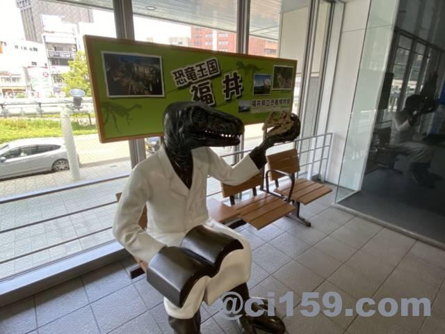 福井駅の恐竜博士
