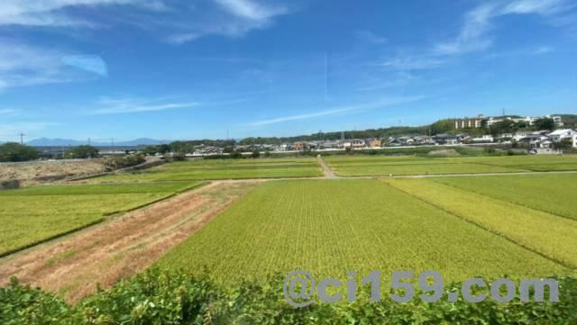 関西線からの車窓