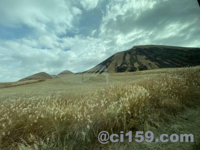 草千里の景色