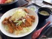 道の駅 北川はゆま「びっくりジャンボチキンカツ丼」